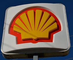 Deli by Shell w Krakowie. Nowy pomysł będzie testowany