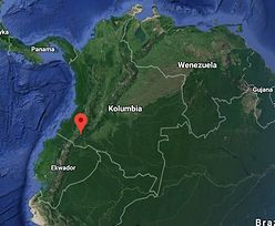 Tropikalny las w Kolumbii w polskich rękach. Powstanie tam baza