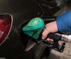 Ceny paliw. Benzyna po mniej niż trzy złote. Znaleźli taką stację