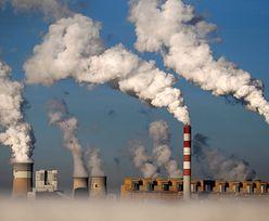 Pozew bez precedensu ws. klimatu wobec państwowej spółki z grupy PGE