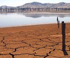 Susza w Portugalii ogarnęła 87 proc. kraju