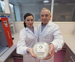 Naukowcy z Łodzi mogą zrewolucjonizować rynek żywności. Koniec z rakotwórczymi wędlinami i importowaną soją