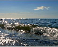 Energia odnawialna. Laguny pływowe przyniosą miliardy funtów