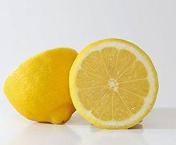 Sadzenie cytryny