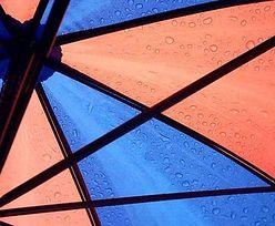 Parasolki z automatu. Niezwykły pomysł na biznes