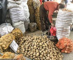 Skończy się podszywanie pod polskie ziemniaki. Nowe rozwiązania dla rolników