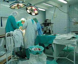Dzień Transplantologii. W Polsce przeszczepiono rekordową liczbę narządów