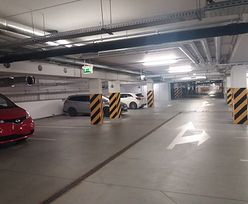 Polacy mistrzami parkowania. Stawiają auta na trawnikach, a parkingi biurowe puste