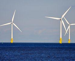 Farmy wiatrowe. Belgia chce wybudować energetyczną wyspę na swoim wybrzeżu