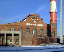 Górnictwo w Polsce. Dwie ściany części kopalni Wujek będą wyeksploatowane do końca