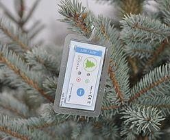 Technologia NFC w służbie bożonarodzeniowej tradycji... bo piękna choinka to świeża choinka