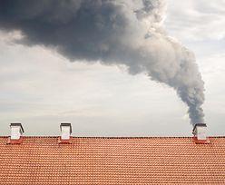 Tychy walczą ze smogiem. 80 proc. dofinansowania na ekologiczne ogrzewanie