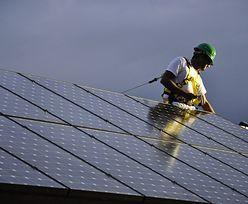 Raport Greenpeace: w 2050 r. świat zasilany wyłącznie energią z OZE