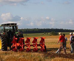 Rolnictwo na Litwie: Trwa referendum w sprawie zakazu sprzedaży ziemi obcokrajowcom