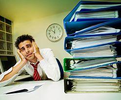 Samozatrudnienie w odwrocie. Zniknęło 51 tys. jednoosobowych firm
