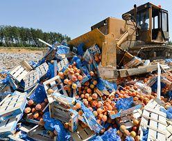 """Koniec z marnowaniem żywności. Europosłowie mówią """"dość"""""""