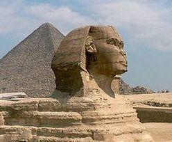Wybory w Egipcie. Rozwiązali parlament