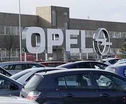 Przejęcie Opla. Ministerstwo rozmawia z nowym właścicielem fabryk w Polsce