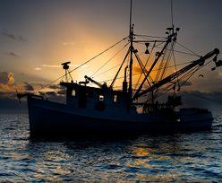 Rybołówstwo na Bałtyku. Unijni ministrowie ustalili kwoty, ekolodzy zawiedzeni