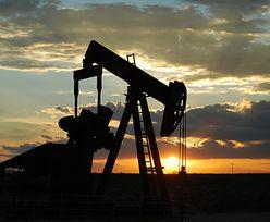 Ceny ropy w dół. Iran zwiększył wydobycie najmocniej od początku roku