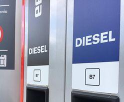 Nowe oznakowanie już na stacjach. Zobacz, jak zatankować odpowiednie paliwo