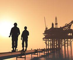 Ceny ropy poniżej granicy. OPEC stoi przed najcięższą próbą