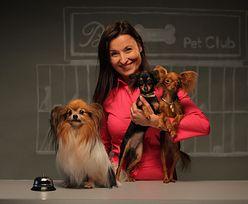 Otworzyła luksusowy hotel dla zwierząt w kraju, w którym pies śpi w budzie