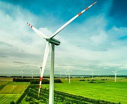 """Farmy wiatrowe. Mieszkańcy mówią """"nie"""""""