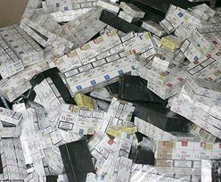 Wpadła międzynarodowa grupa handlująca nielegalnymi papierosami