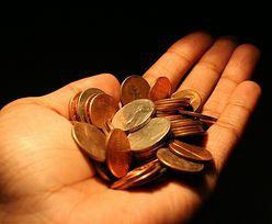 PKO BP i konta osobiste. Jak internauci zarządzają finansami?