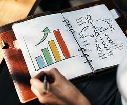 Pomysły na biznes, czyli pierwszy krok do założenia działalności
