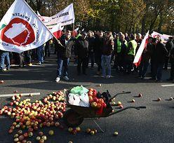 Rosyjskie embargo na jabłka. Wściekli sadownicy zablokowali drogę