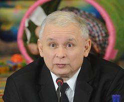 Afera madrycka. Kaczyński: posłowie usunięci z PiS nie wrócą