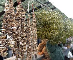 Tańsze owoce i warzywa na święta na rynku hurtowym w Broniszach