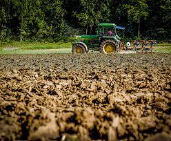 Polskie rolnictwo dotyka susza. Straty przekroczyły już pół mld złotych