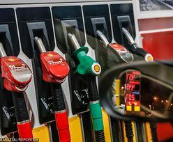 Kukiz'15 na wojnie z opłatą paliwową. Jest projekt ustawy