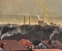 Rząd bardziej dba o interes lobby węglowego niż o zdrowie Polaków. Raport NIK o walce ze smogiem