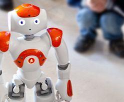 Roboty uprawiające sumo? Musisz to zobaczyć