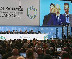 """Wiceminister środowiska na szczycie: Nie mamy """"planu B"""""""
