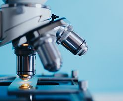 Wsparcie dla młodych naukowców