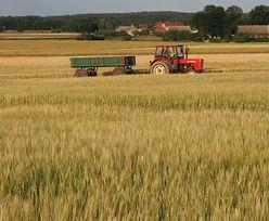 Projekt dot. dodatkowych zarobków rolników bez konieczności rezygnacji z KRUS
