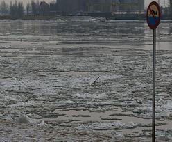 Ambitny podróźnik przepłynie Wisłę zimą