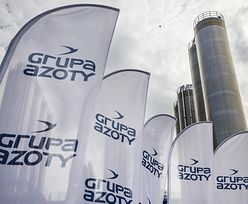 Rosjanie odsprzedadzą Polsce udziały w Azotach? Rząd nad tym pracuje