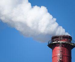 Porozumienie klimatyczne z Paryża. Polska przespała czas na negocjacje?