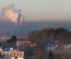 """Limit ze smogiem pękł w lutym. Co na to rząd? """"Węgiel nie truje"""""""