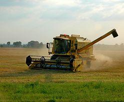Dopłaty bezpośrednie dla rolników. Będą zmiany
