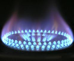 Towarowa Giełda Energii: rekordowy obrót gazem na rynku spot