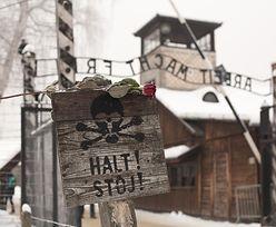 Stosunki Izrael-Palestyna. Wykładowca szykanowany za podróż do Auschwitz-Birkenau