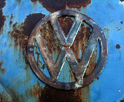 Afera w Volkswagenie. Tym razem koncern przeprasza za testy na małpach