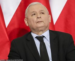 Reparacje wojenne. Prezes Kaczyński szykuje się do walki na forum międzynarodowym